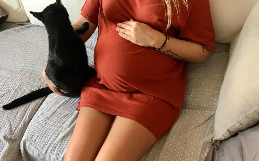 toxoplasmosi gravidanza gatti cosa fare