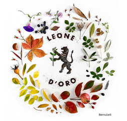 leone d'oro international