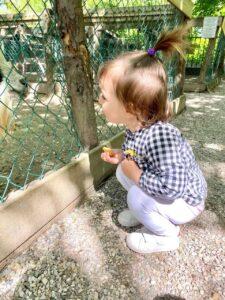 Una giornata in famiglia con i bimbi a Parco Sigurtà